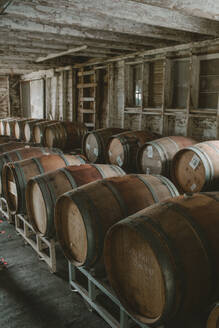 Wine barrels in an old barn turned wine cellar - CAVF66270