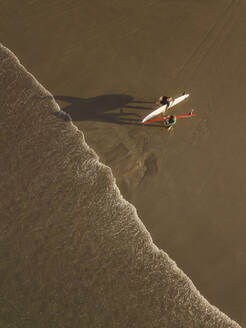 Aerial view of surfers at the beach - CAVF66862