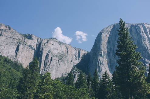Trees and mountains against sky at Yosemite National Park - CAVF67212
