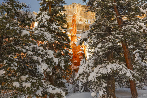 Rock formations at Bryce Canyon National Park seen through snow covered trees - CAVF67875