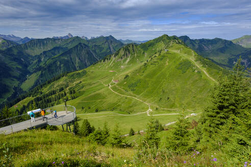 am Walmendinger Horn, Kleinwalsertal, Allgäuer Alpen, Allgäu, Vorarlberg, Österreich - LBF02756