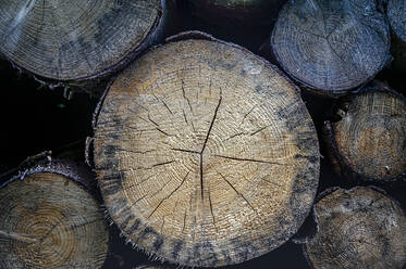 Close-up of stack of wood - FRF00884