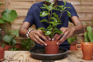 Young man repotting a plant on his terrace - IGGF01381