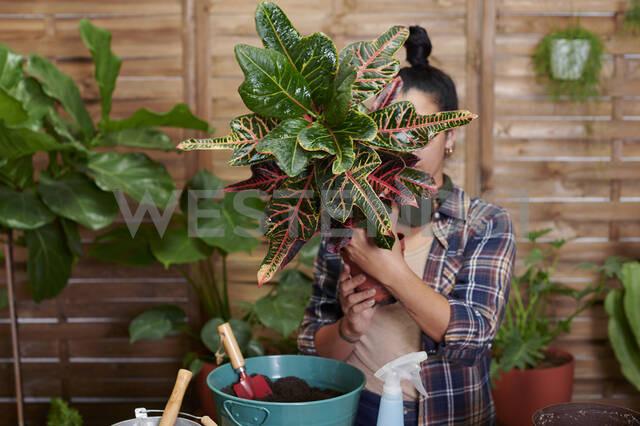 Young woman gardening on her terrace - IGGF01390 - Ivan Gener/Westend61