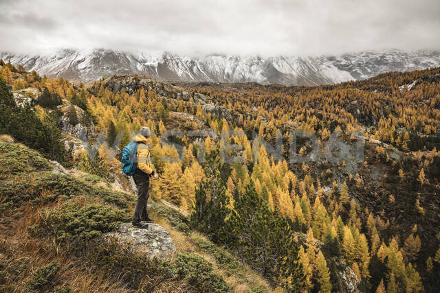 Hiker standing and looking over alpine plateau in autumn, Sondrio, Italy - MCVF00069 - 27exp/Westend61