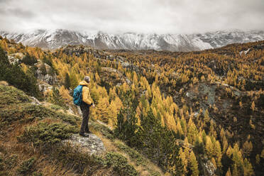 Hiker standing and looking over alpine plateau in autumn, Sondrio, Italy - MCVF00069