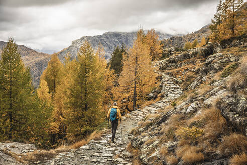 Hiker walking through alpine plateau in autumn, Sondrio, Italy - MCVF00072