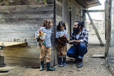Father with two kids in chicken coop on an organic farm - SODF00308