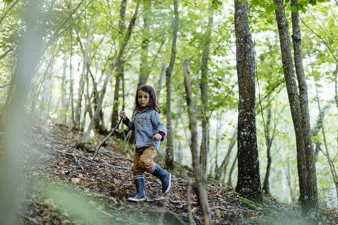 Child walking in the forest - SODF00323
