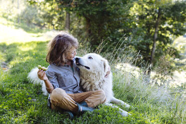 Boy relaxing with dog on a meadow - SODF00335