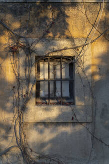 House front with barred window in autumn - AFVF04159