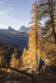 Hiker enjoying Dolomites in autumn, Veneto, Italy - MCVF00083