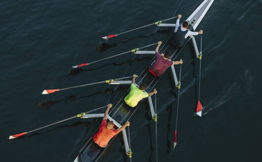 High angle view of unrecognizable male crew racers, Lake Union, Seattle, Washington - MINF12834
