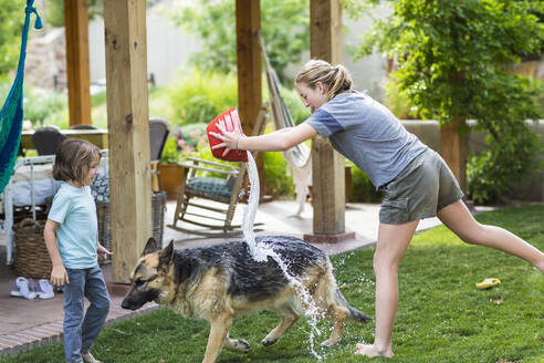 A teenage girl washing her dog on green lawn - MINF13245