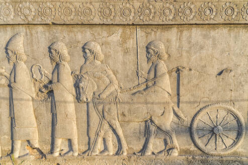 Apadana stairway facade, relief of the Achaemenids, Medes and Persians, Persepolis, UNESCO World Heritage Site, Fars Province, Islamic Republic of Iran, Middle East - RHPLF12682
