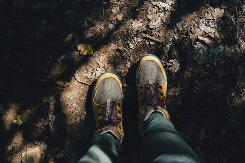 Hiking boots in autumn on a path with leaves - GEMF03292