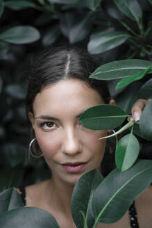 Portrait of young woman hiding behind green leaves - AFVF04211