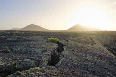 Lavafeld mit Flechten bei Sonnenuntergang, Schutzgebiet Monumento Natural de la Cueva de los Naturalistas, bei Tinajo, Lanzarote, Kanaren, Spanien - SIEF09288