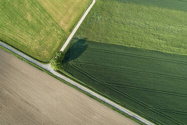 Germany, Bavaria, Aerial view of country roads cutting through green countryside fields in spring - RUEF02359