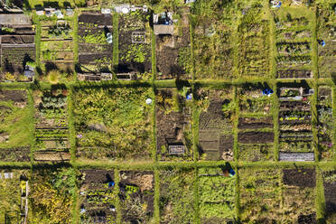 Germany, Bavaria, Geretsried, Aerial view of rows of community gardens - LHF00759