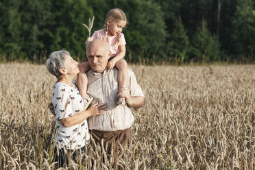 Family portrait of grandparents with their granddaughter in an oat field - EYAF00698