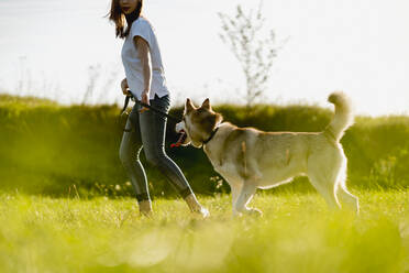 Young woman running with her dog on a meadow - MAUF03085