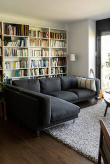 Couch and bookshelf in cozy living room - VABF02464