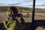 Back view of girl taking photo of lion, Inverdoorn game Reserve, Breede River DC, South Africa - MCF00359