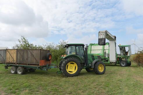 Apple harvesting on a plantation, harvester for automation - LYF00960