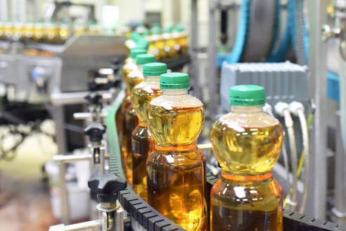 Apple-juice factory, bottling, apple juice - LYF00969