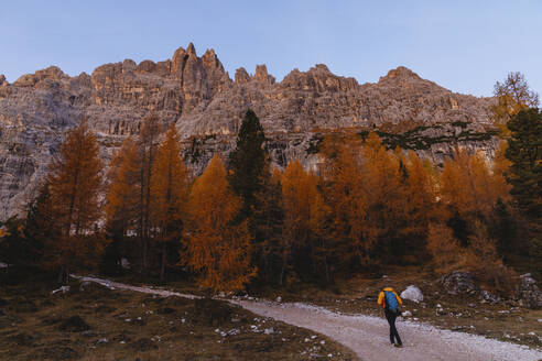 Man hiking at Dolomites Alps in the morning, Cortina, Italy - MRAF00434