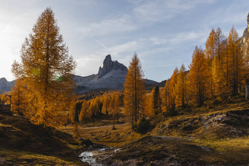 Autumn mountain landscape at the morning light, Dolomites, Cortina, Italy - MRAF00446