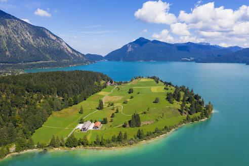 Germany, Bavaria, Aerial view of LakeWalchenandZwergernpeninsula in summer - SIEF09332