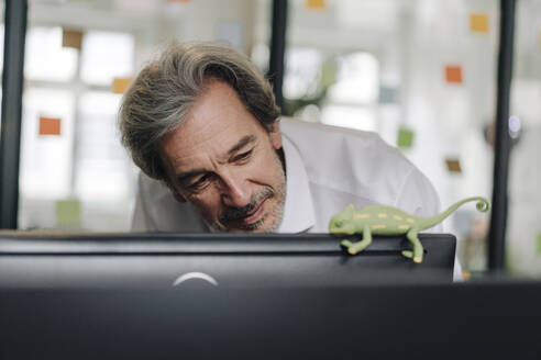 Senior businessman with chameleon figurine in office - GUSF02854