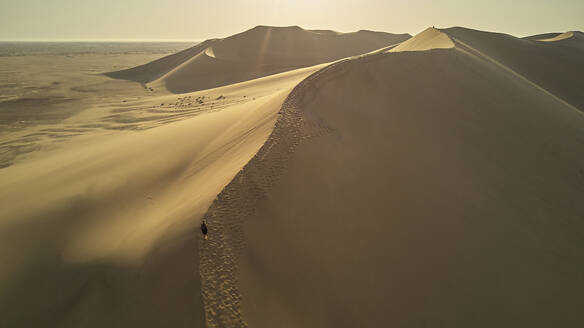 Dune landscape. Namib Desert, Namibia - VEGF00908