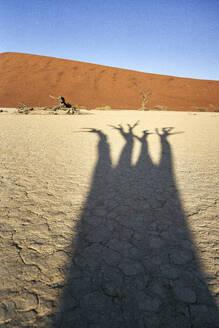 Dead tree shadow in Deadvlei at sunrise, Sossusvlei, Namib desert, Namibia - VEGF00923