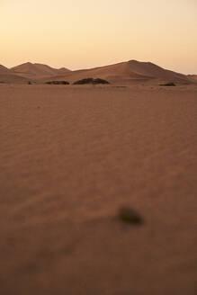 Dune perspective, Walvis Bay, Namibia - VEGF00959