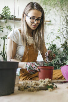 Young woman working at table in a small gardening shop - VPIF01827