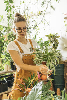 Young woman caring for plants in a small shop - VPIF01839