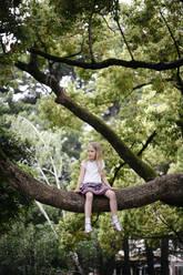 Little girl sitting in a big tree - EYAF00717