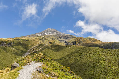 New Zealand, Scenic view of MountTaranakivolcano and surrounding forest in spring - FOF11314