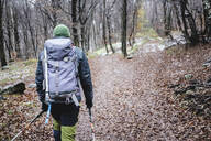 Man hiking in the autumn forest, Italian Alps, Como, Lombardy, Italy - MCVF00102