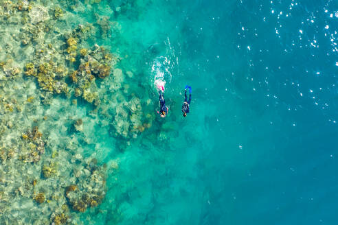 Aerial view of two persons snorkeling at Great Barrier Reef in Australia. - AAEF05837