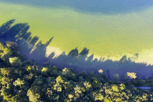Germany, Bavaria, Bernried am Starnberger See, Aerial view of forest edge and green shore of Lake Starnberg - SIEF09369