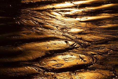 USA, California, Santa Monica, Beach sand illuminated by setting sun - SEEF00073