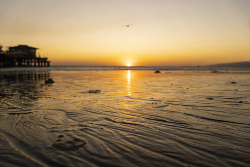 USA, California, Santa Monica, Wet sand of coastal beach at sunset with Santa Monica Pier in background - SEEF00076