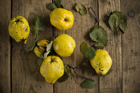 Fresh yellow quinces lying on wooden surface - ASF06554