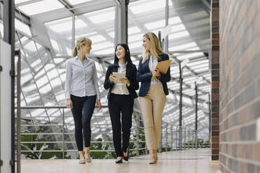 Three businesswomen with tablet walking and talking in modern office building - JOSF03878