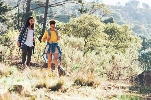 Young women friends hiking in sunny woods - CAIF23594