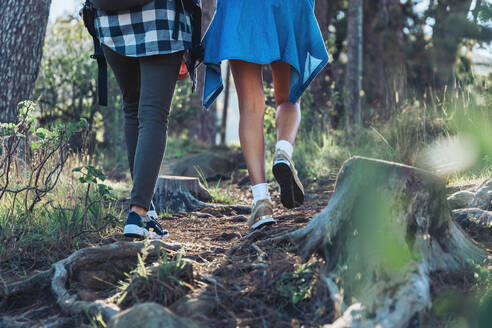 Female hikers on trail in woods - CAIF23609